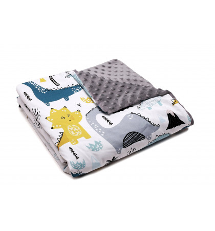 Minky Fleece Blanket...